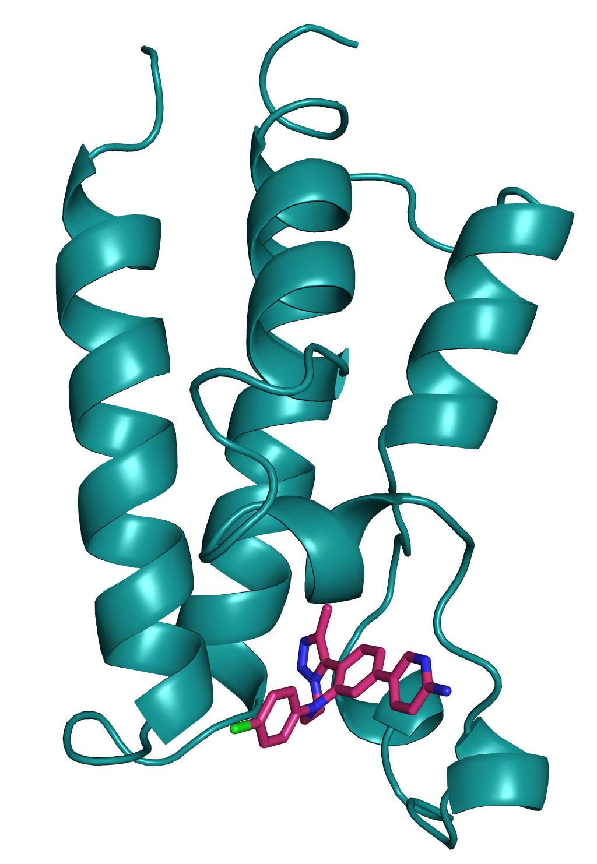 Small molecule bound to BET protien
